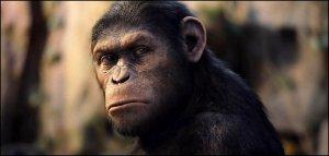 a majmok bolygója - a lázadás
